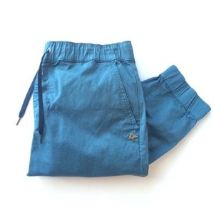 HP🎉LRG Chino joggers (NWOT) in teal blue